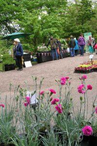 Hodnet plant Fair